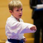 seenland-karate-cup_16-11