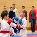 seenland-karate-cup_16-85